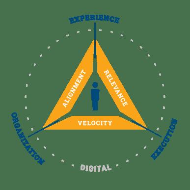 Intevity's Digital Triality Model