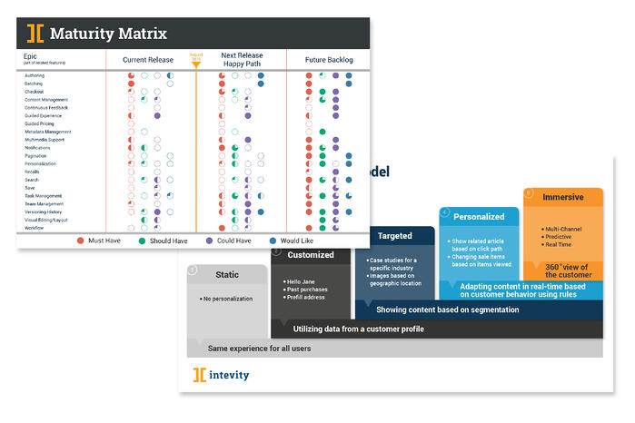 maturity_matrix_samples